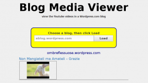 Blog media viewer